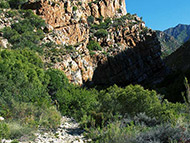 Montagu Mountain Mania
